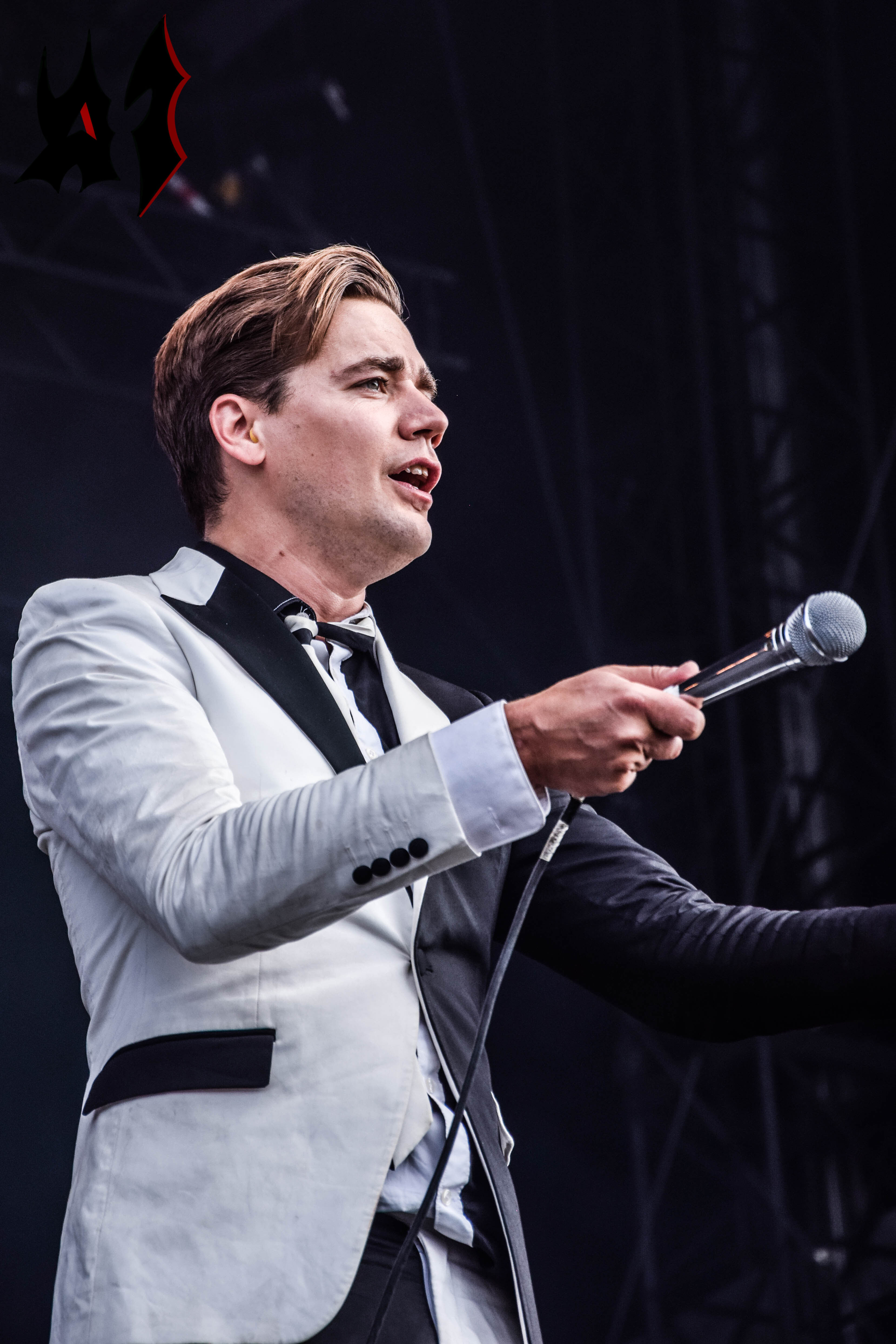 Donwload 2018 – Day 3 - The Hives 22