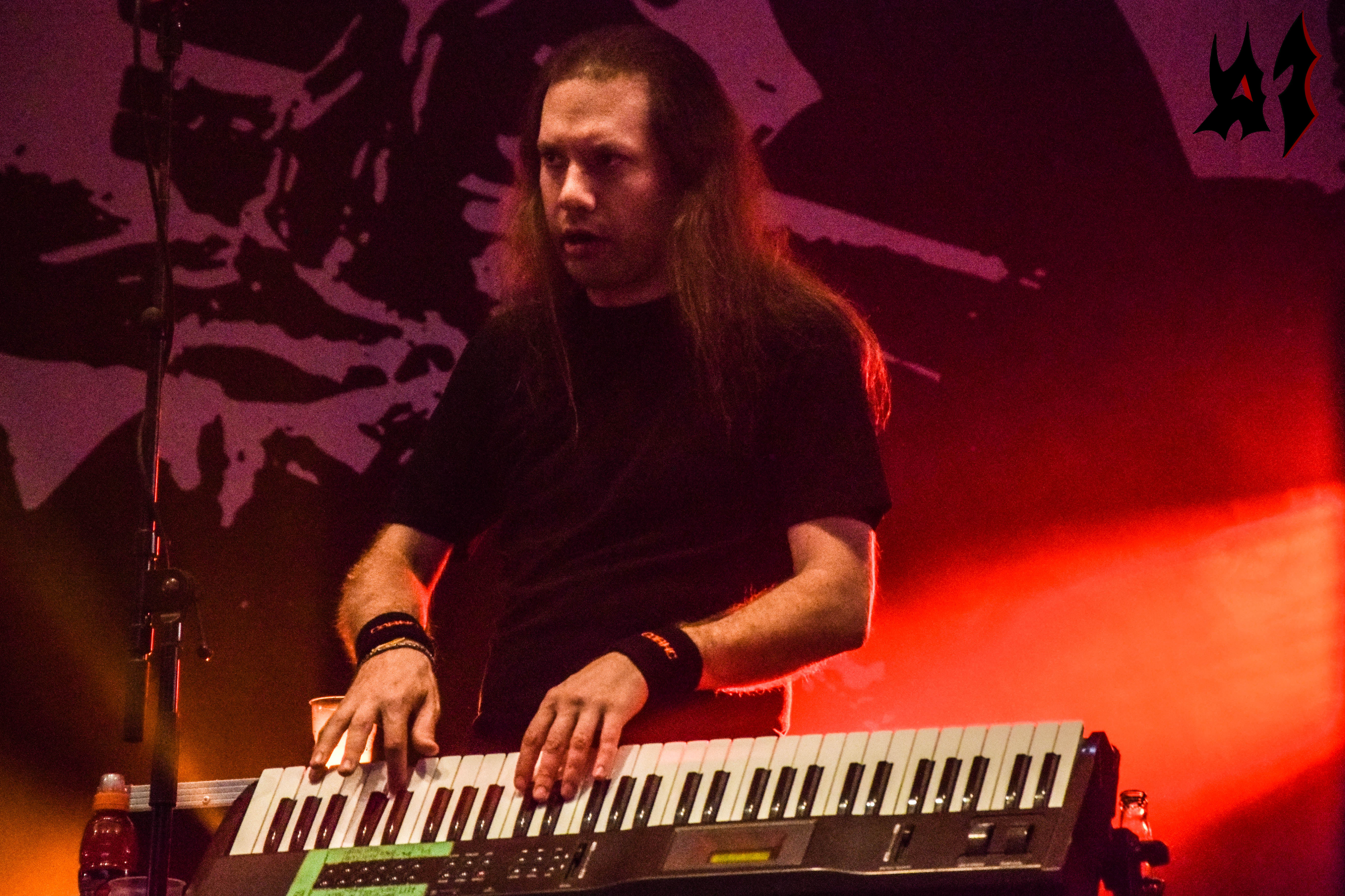 Hellfest - Jour 2 - Children Of Bodom 7