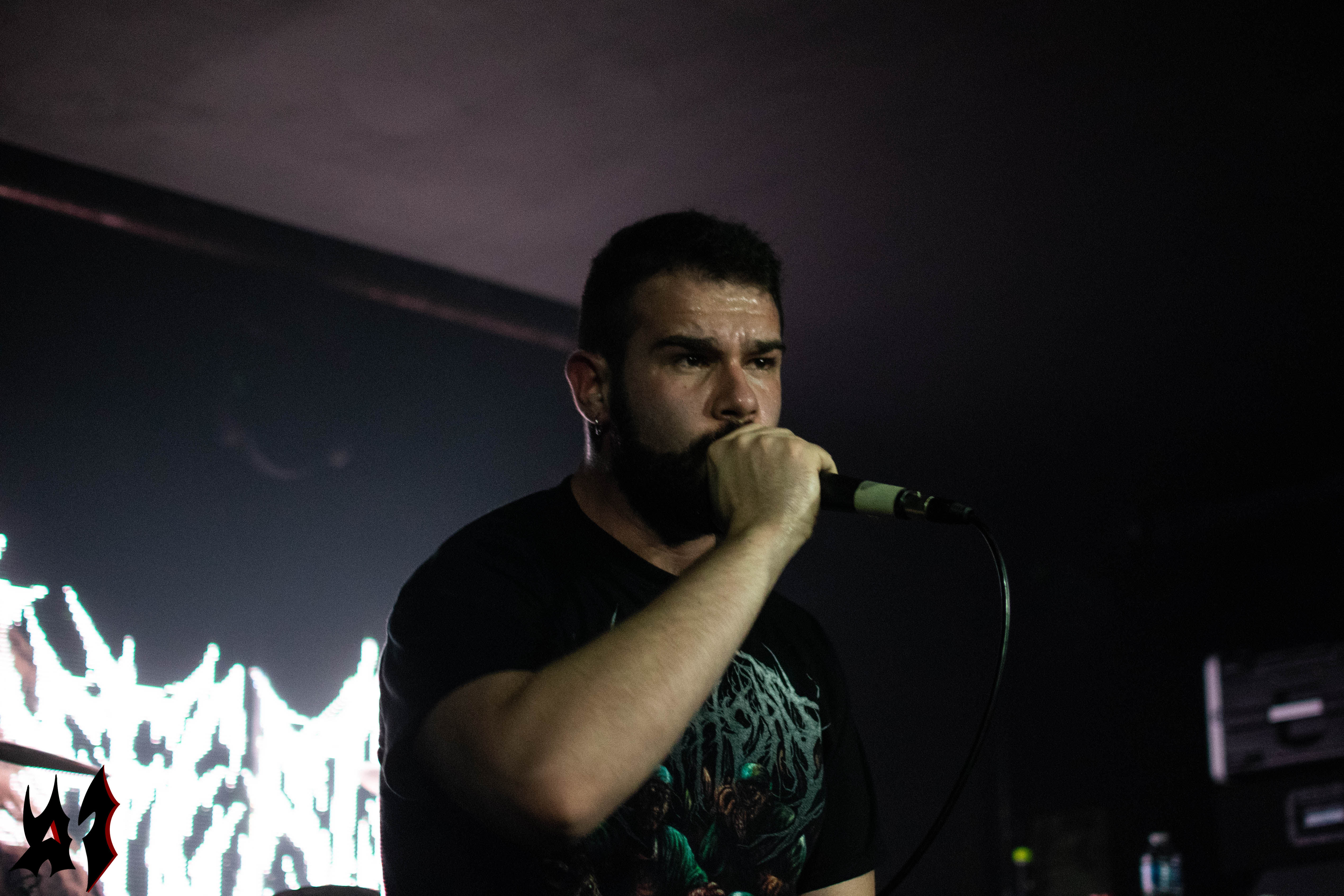 Defeated Sanity - 3