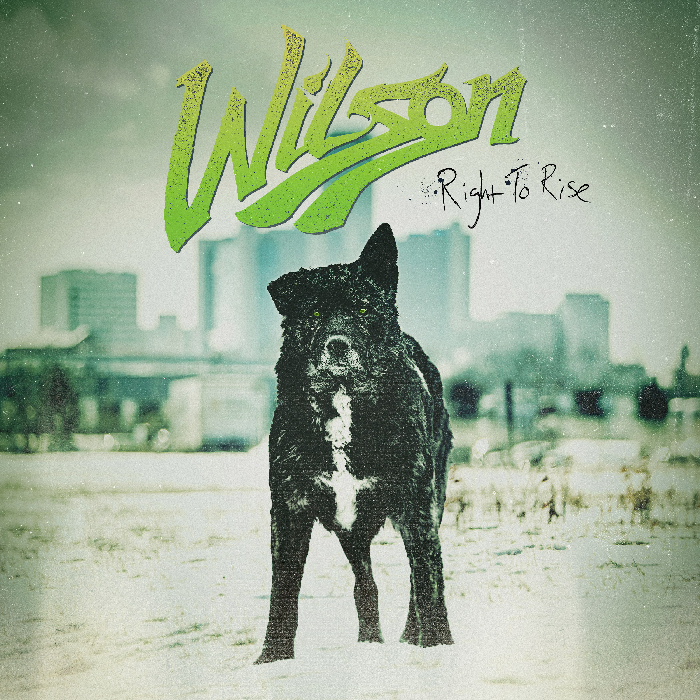 Wilson - Right To Rise