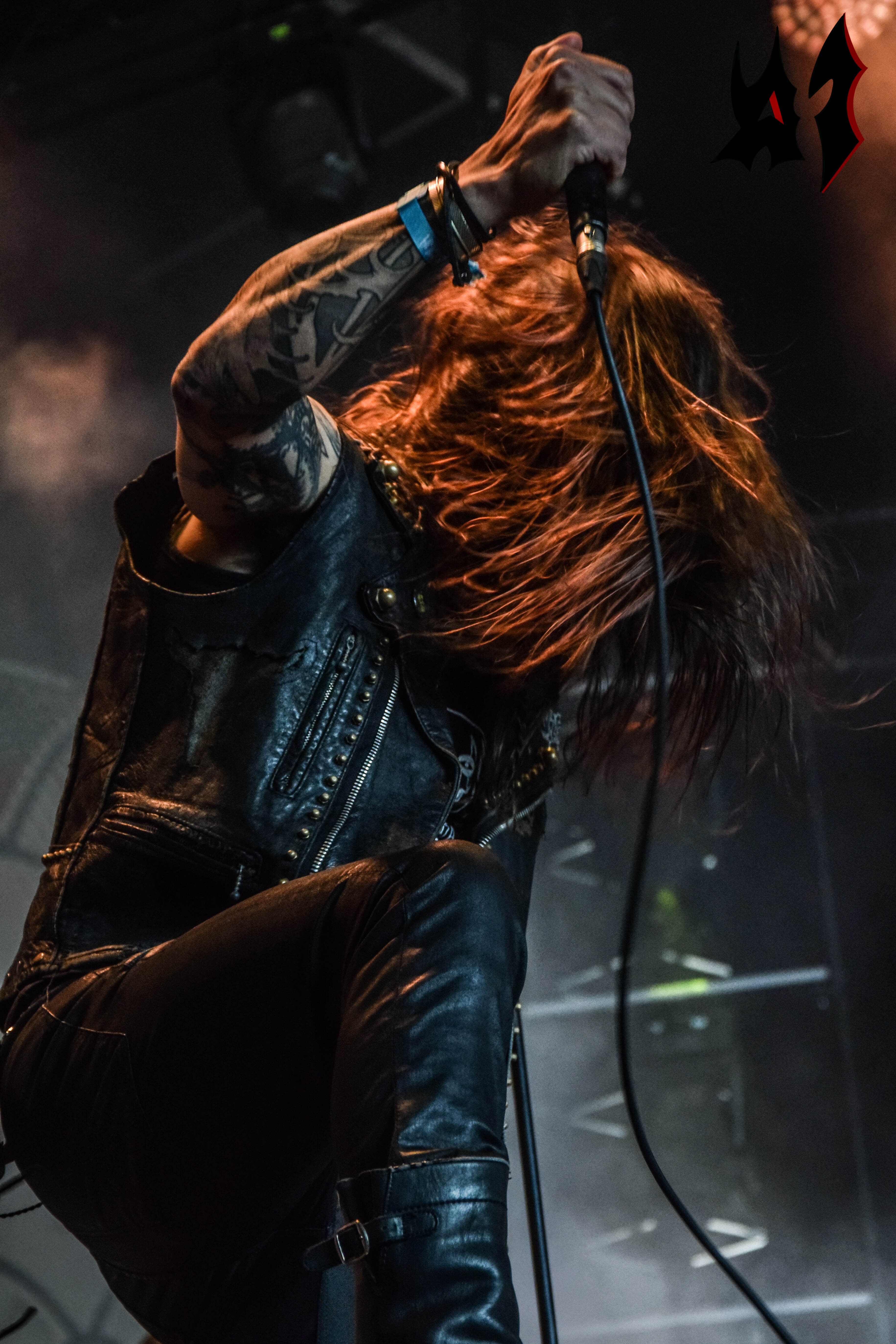 Hellfest 2018 – Day 3 - Amorphis 6