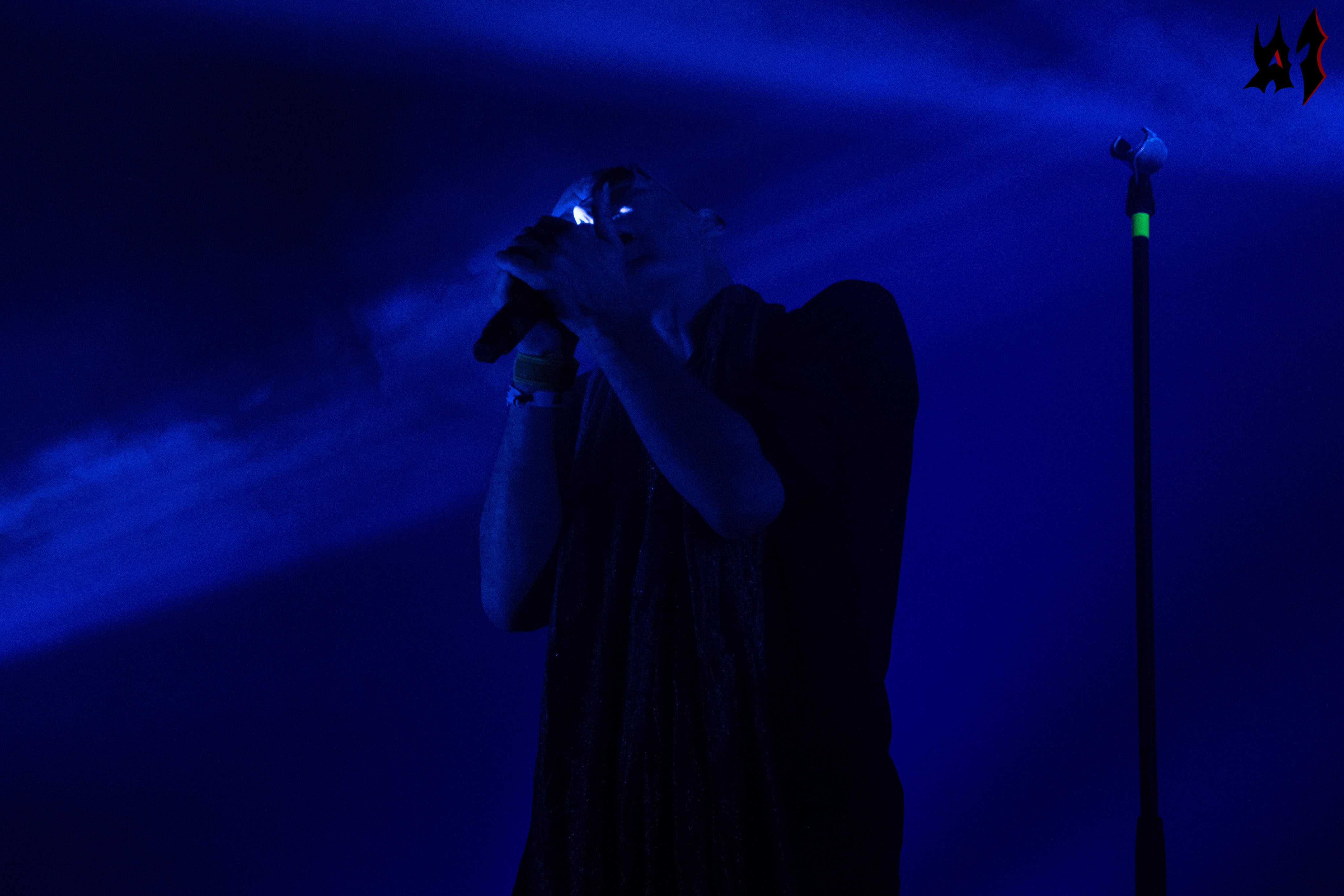 Hellfest - The Sisters Of Mercy - 6