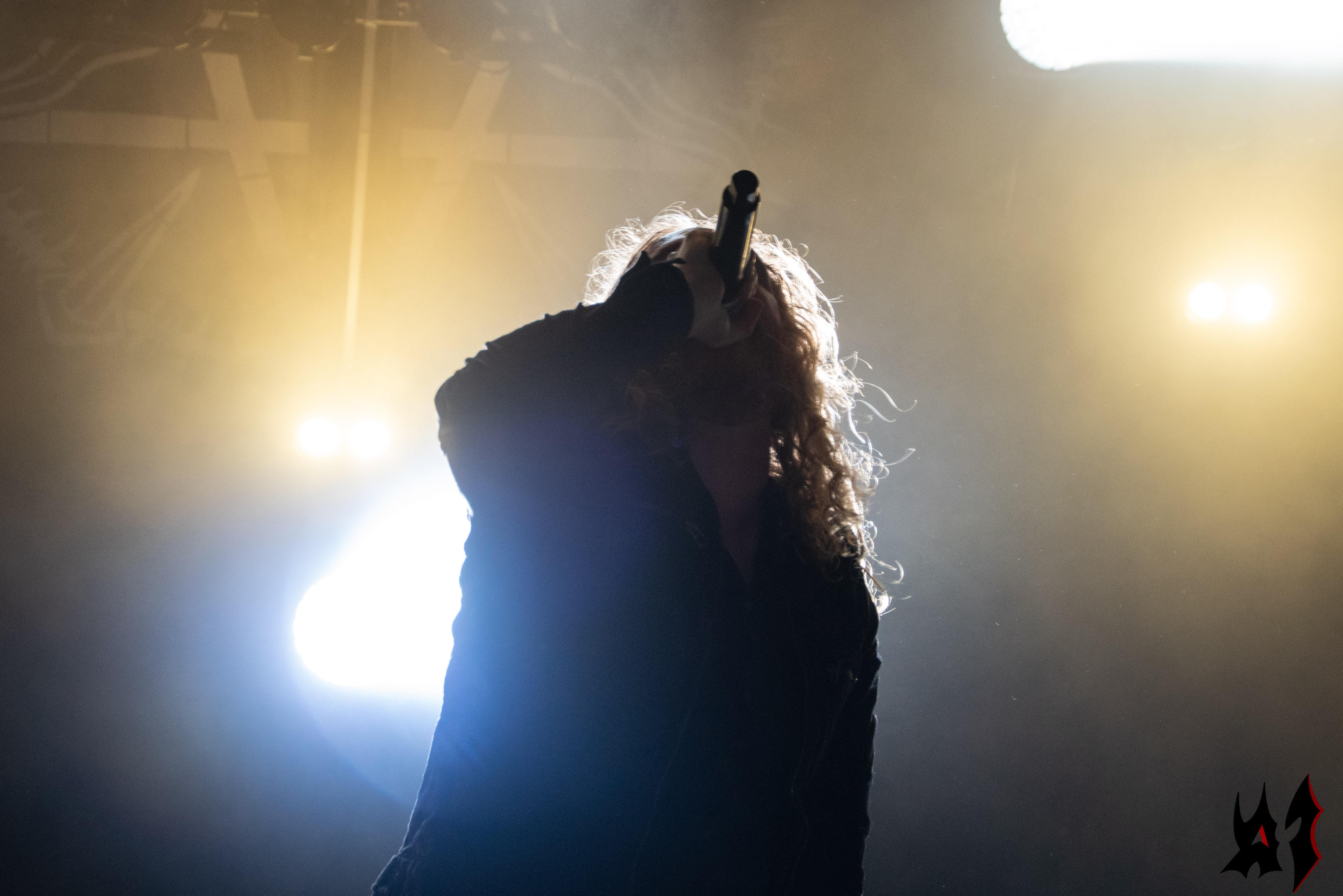 Hellfest - Dark Tranquillity - 10