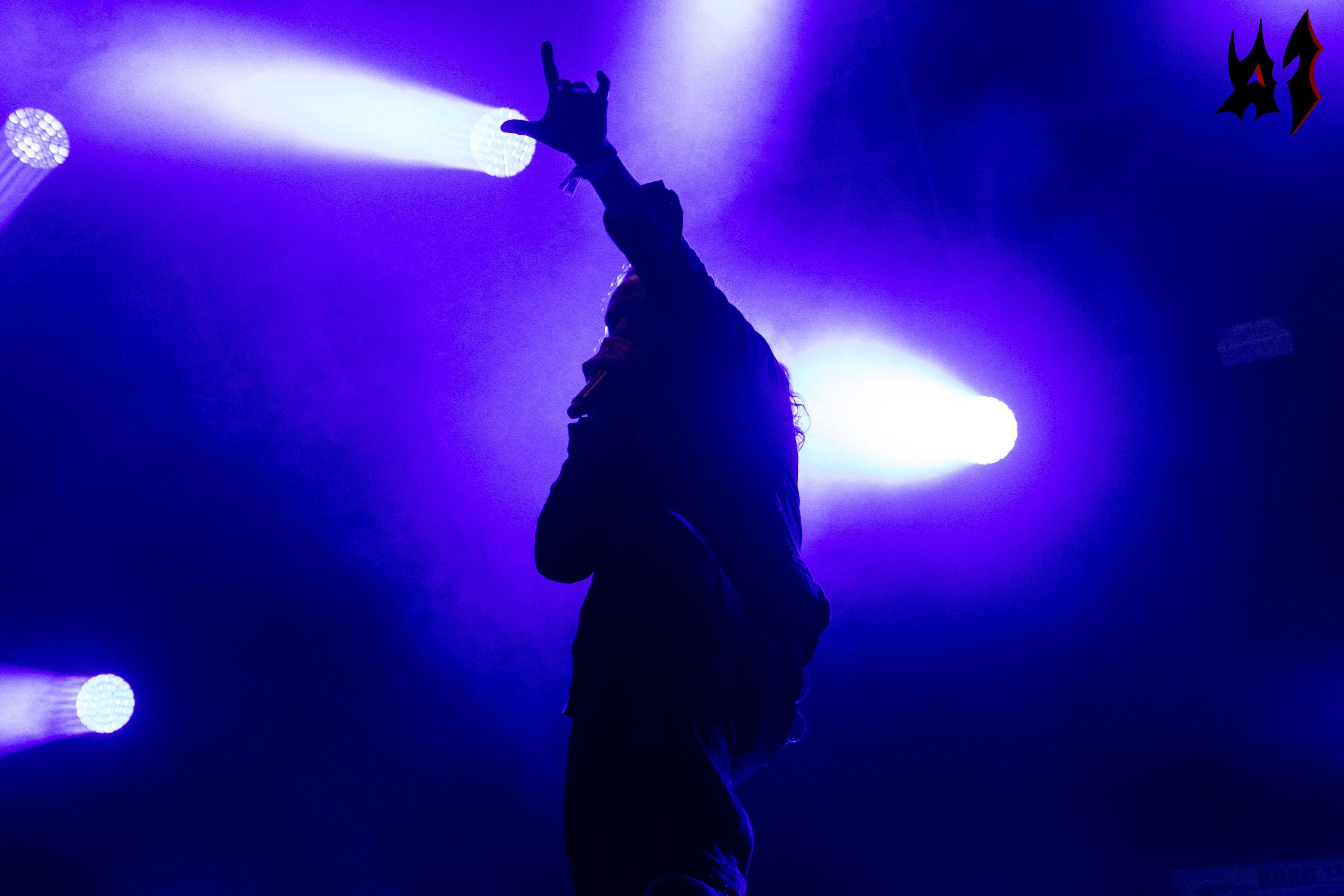 Hellfest - Dark Tranquillity - 15